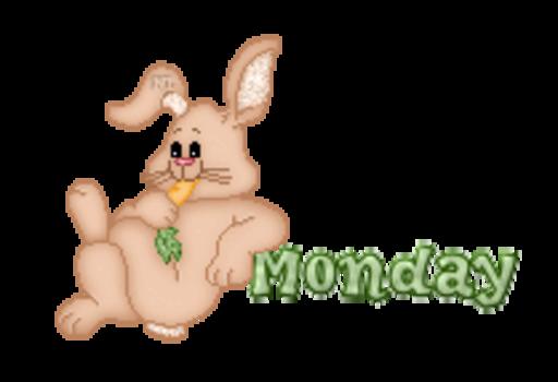 DOTW Monday - BunnyWithCarrot