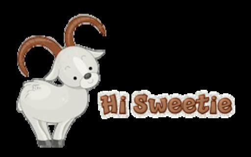 Hi Sweetie - BighornSheep