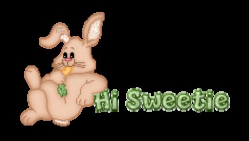 Hi Sweetie - BunnyWithCarrot