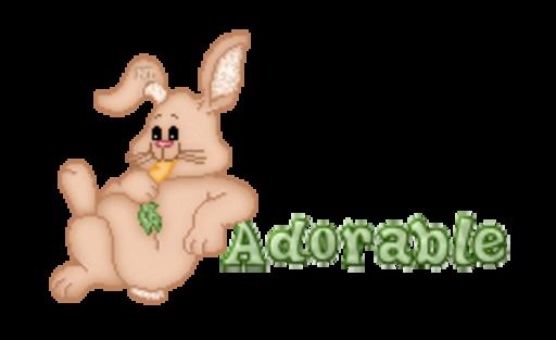 Adorable - BunnyWithCarrot