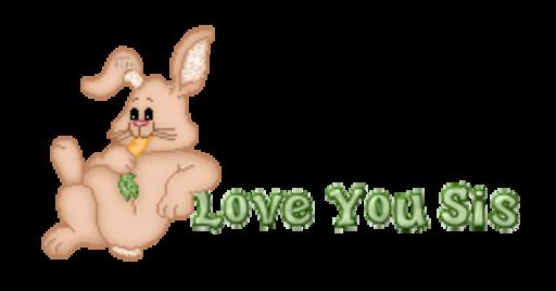Love You Sis - BunnyWithCarrot