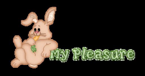 My Pleasure - BunnyWithCarrot