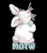 MOTW - HippityHoppityBunny