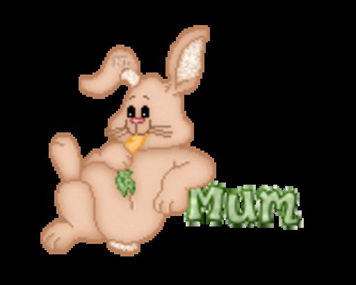 Mum - BunnyWithCarrot