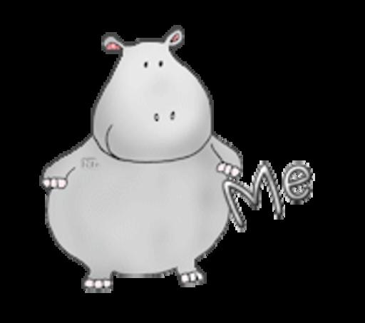 Me - CuteHippo2018
