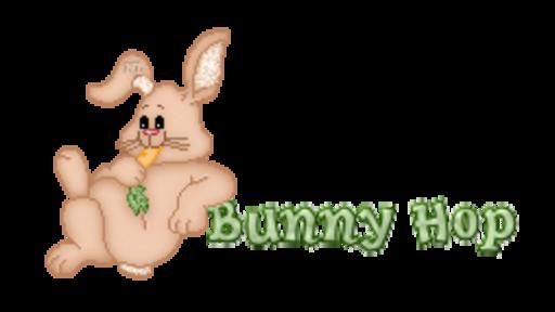 Bunny Hop - BunnyWithCarrot