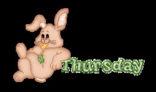 DOTW Thursday - BunnyWithCarrot