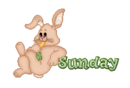 DOTW Sunday - BunnyWithCarrot