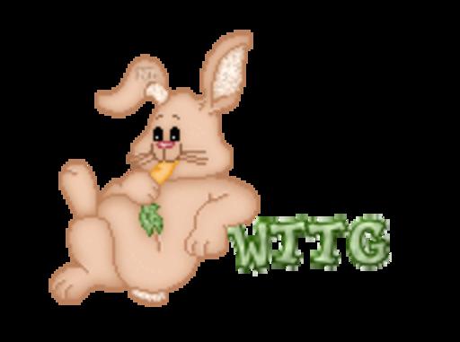 WTTG - BunnyWithCarrot