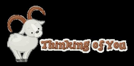 Thinking of You - BighornSheep