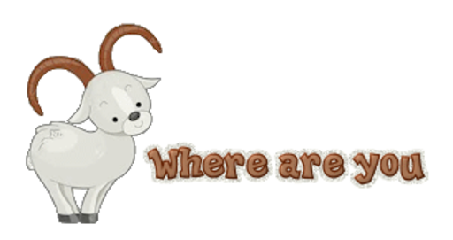 Where are you - BighornSheep