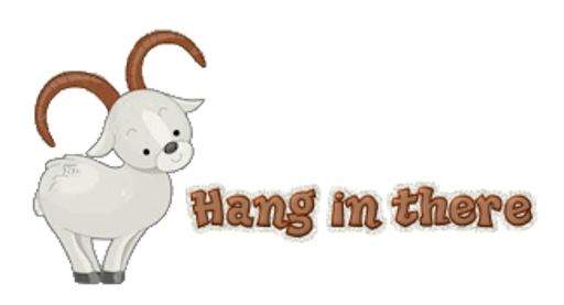 Hang in there - BighornSheep