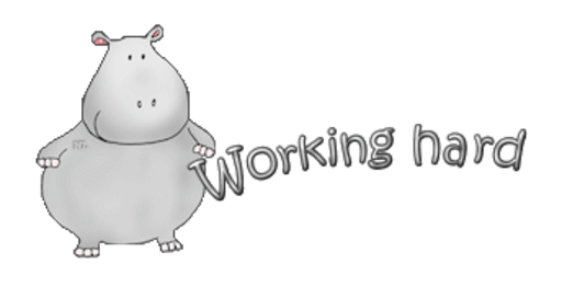 Working hard - CuteHippo2018