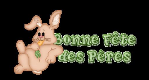 Bonne Fete des Peres - BunnyWithCarrot