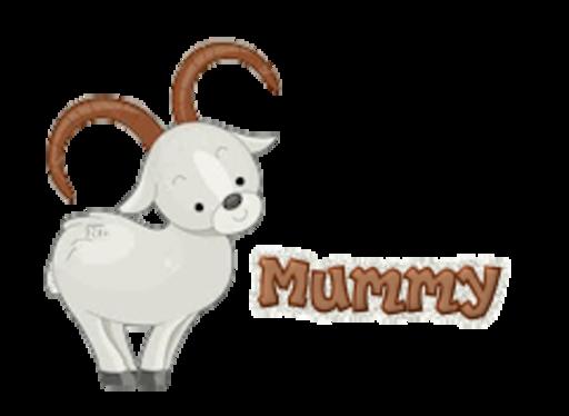 Mummy - BighornSheep