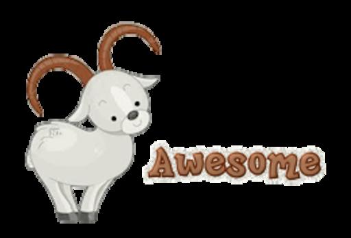 Awesome - BighornSheep