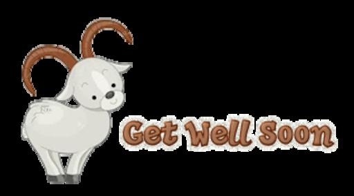Get Well Soon - BighornSheep