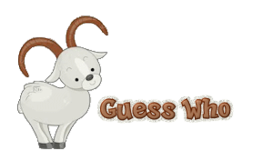 Guess Who - BighornSheep