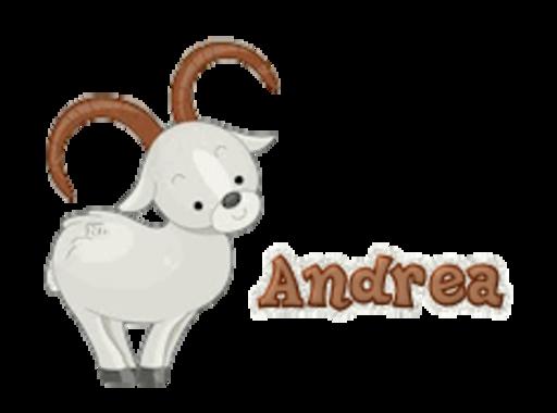 Andrea - BighornSheep