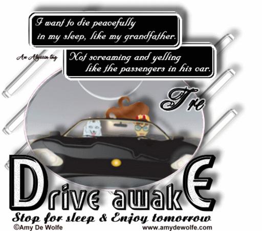 Tre DriveAwake AmyDeW Alyssia