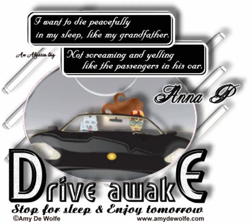 Anna P DriveAwake AmyDeW Alyssia