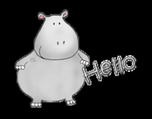 Hello - CuteHippo2018