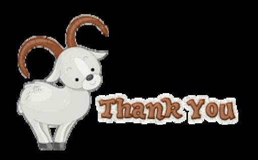 Thank You - BighornSheep