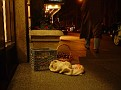 6ave,centralpark,kastans,hotels,cristmass16dec2002 150