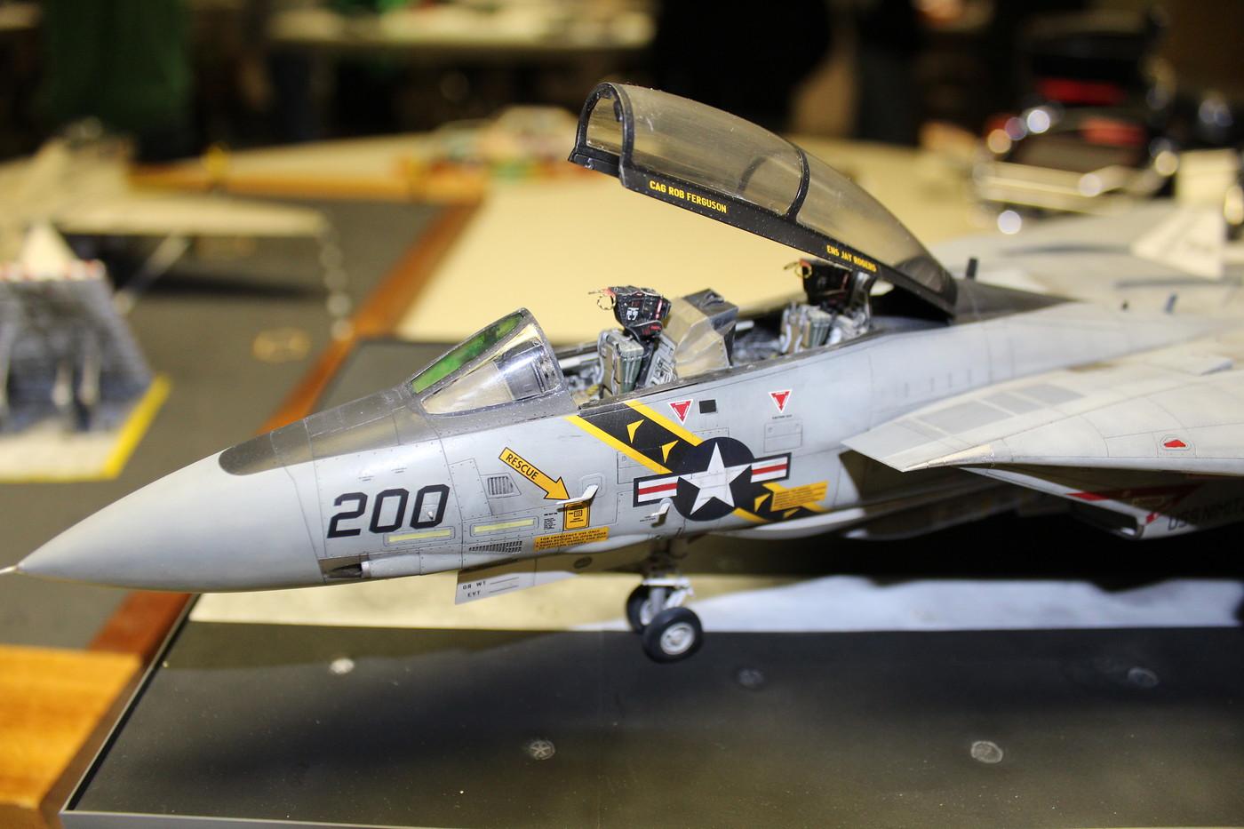 3-F-14 Tomcat-RTurner 2