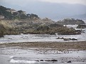 Monterey Trip Aug07 353.jpg