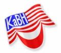 Американская Лига КВН (kabh) avatar