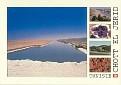Tunisia - Chott El Jerid Salt Desert